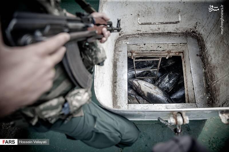 برخورد سپاه با صیادان متخلف خلیجفارس