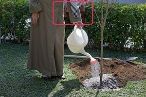 نکتهای جالب از درختکاری امروز رهبرانقلاب +عکس