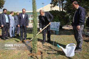 عکس/ درختکاری لاریجانی در حیاط مجلس