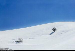 تصاویر زیبا از کوههای سفیدپوش کردستان