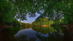 عکس/ دریاچهای زیبا در دل جنگلهای مازندران