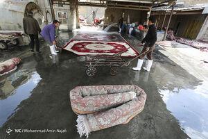 فیلم/ نرخهای اتحادیه قالیشویان برای شب عید