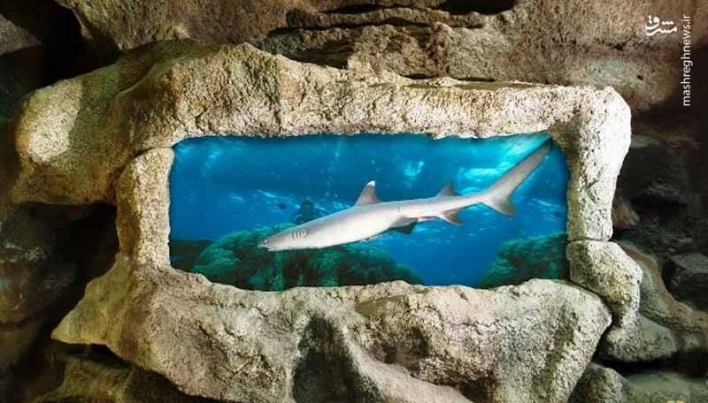 آکواریوم زیرزمینی گنجنامه نیز در مجموعه ی توریستی گنجنامه قرار دارد . این مجموعه مانند غاری زیر زمینی است که درون دیوار هایش انواع ماهی های مختلفی دارد .