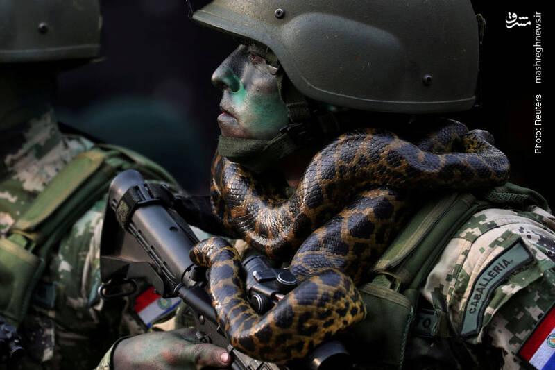 یکی از نیروهای ویژه ارتش پاراگوئه در حال رژه مقابل رئیسجمهور بنیتس