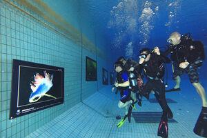 عکس/ نمایشگاهی زیر آب!