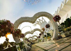 عروسیهایی عجیب در تهران که ۵۰۰ میلیون تومان خرج بر میدارد/ سرو «چاپسویی» و پرواز با بالگرد فقط با ارائه پرینت حساب +عکس