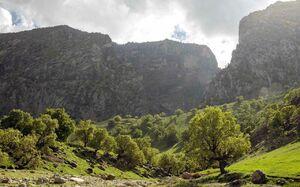 """فیلم/ با""""عروس کوههای ایران"""" آشنا شوید"""