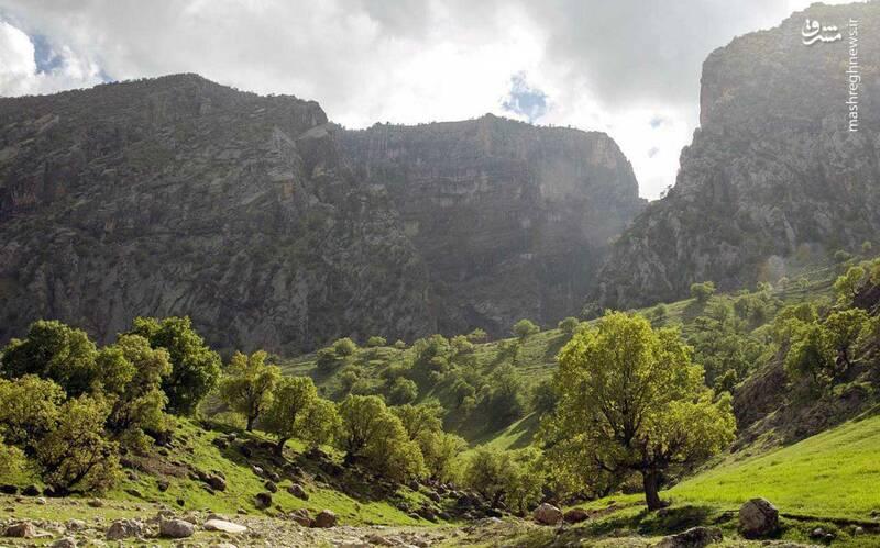 منطقه ی کبیر کوه دارای ۲۰ هزار هکتار منطقه ی حفاظت شده ی جنگلی است.