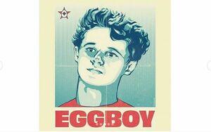 پسری که با تخم مرغ معروف شد +عکس