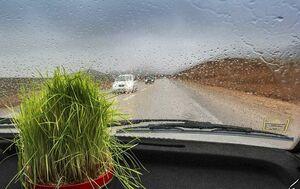 13 بدر بارونی مازندران