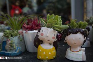 عکس/ بازار گل تهران در آستانه سال نو