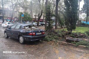 تشریح وضعیت استانهای درگیر سیلاب