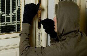 سرقت دزدی