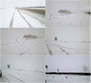 عکس/ بارش سنگین برف در بجنورد