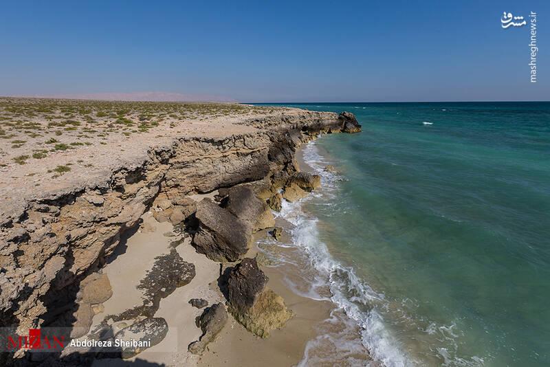 عکس/ جزیرهای شگفتانگیز در خلیج فارس!