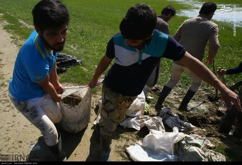 عکس/ تلاش اهالی مناطق سیل زده برای ایجاد سیل بند!