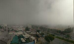 عکس/ گردوغبار شدید در بوشهر