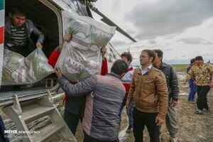 عکس/ ادامه امدادرسانی به سیلزدگان گمیشان
