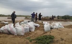 آمادهباش در دشتآزادگان با خروش رودخانه کرخه +عکس
