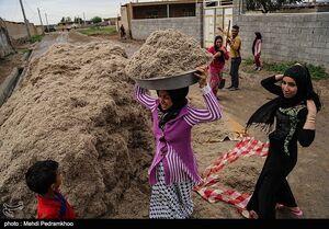 عکس/  تخلیه روستاهای شعیبیه - خوزستان
