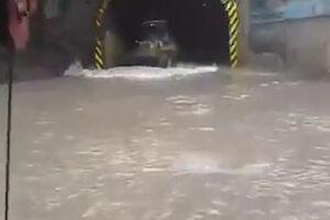 فیلم/ آبگرفتگی شدید در بین تونل ٢و٣ جاده چالوس