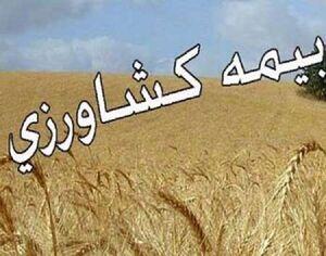 آغاز پرداخت غرامت سیل به کشاورزان از ۱۵ فروردین