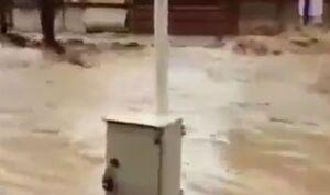 فیلم/ سیلاب سهمگین میدان انوشیروان رضائی خرم آباد