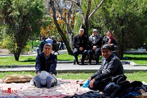 عکس/ بازدید فرمانده انتظامی تهران از پارک ملت در روز طبیعت