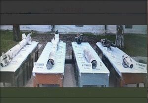 پاکستان تصاویر جدیدی از مستندات تصاحب جنگنده هندی منتشر کرد