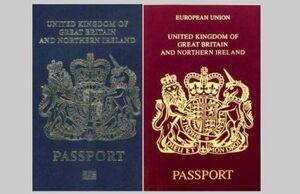 مسئولین دو تابعیتی جهت تعویض پاسپورت اقدام کنند +عکس