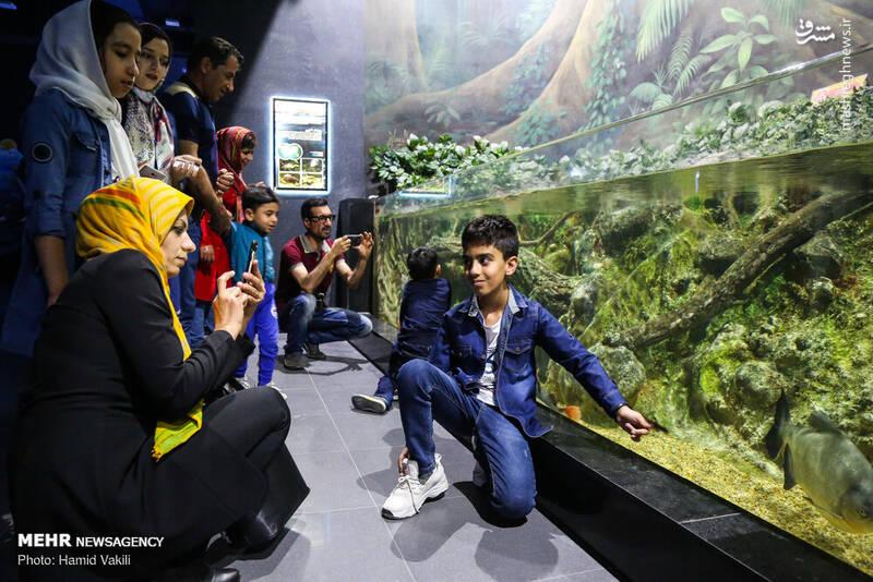 عکس/ تونل آکواریوم دیدنی در اصفهان - 5