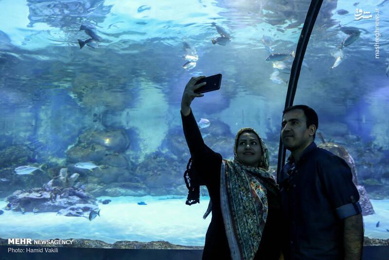 عکس/ تونل آکواریوم دیدنی در اصفهان - 18
