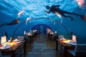 رستورانهای زیر آبی در جهان