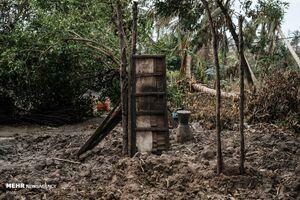 زنده ماندن در موزامبیک بعد از سیل