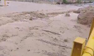 سیل در اطراف کرمان و آب گرفتگی خانهها