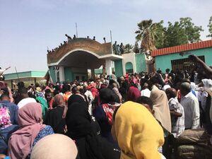 عکس/ تجمع گسترده مخالفان البشیر در سودان