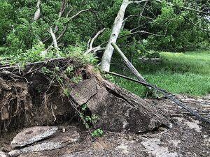 طوفان در آمریکا، جان ۴ نفر را گرفت