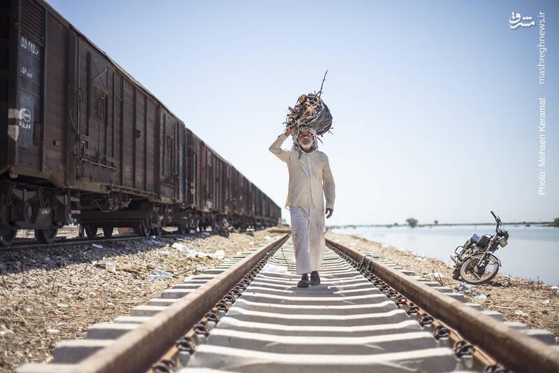 ساکنان این قطار برای گرم شدن در شب های سرد بهار، روزها به جمع کردن چوب خشک و هیزم مشغول هستند.