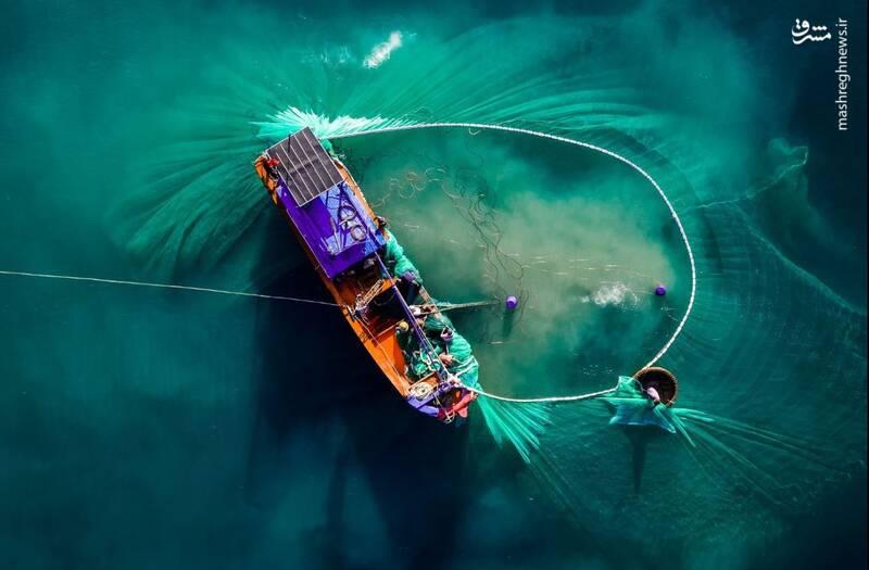 عکس/ نمایی متفاوت از صید ماهی - 1