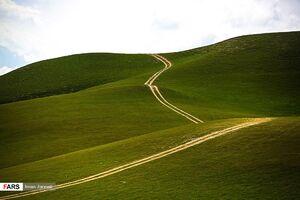عکس/ طبیعت بکر «شیلگان دره»