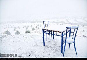 بارش برف بهاری در زنجان
