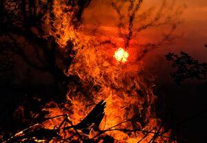 فیلم/ آتش سوزی در عمارت لوکس!