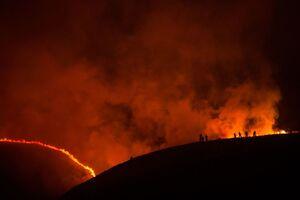 عکس/ آتش سوزی مهیب در جنگلهای ایرلند