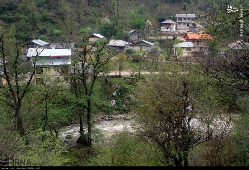 عکس/ ساخت خانه در حریم رودخانه - 11