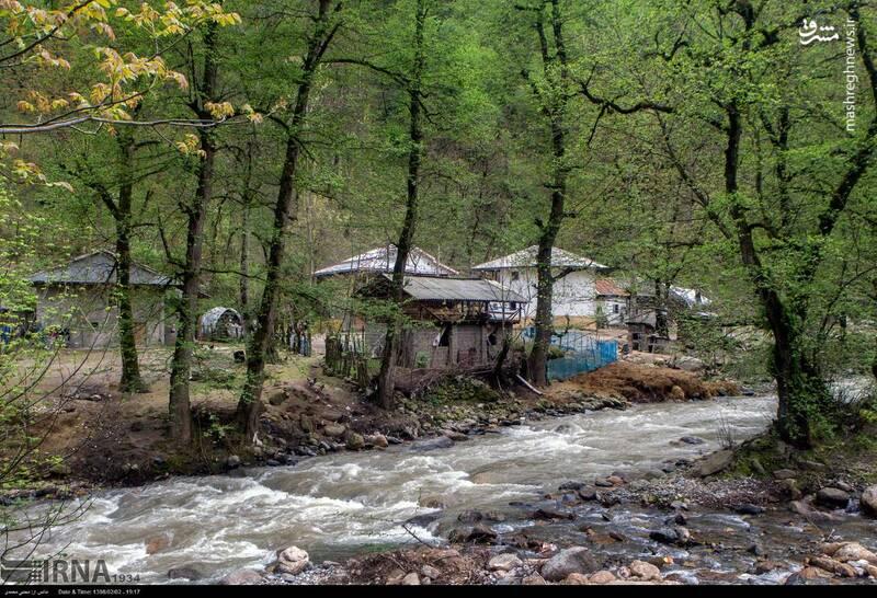 عکس/ ساخت خانه در حریم رودخانه - 1