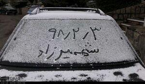 عکس/ زمستان در بهار شهمیرزاد