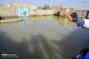 دولت احیاء «هامون» را به نام خود نزند! +عکس