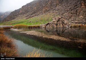 پرآبی بیسابقه منحصر بهفردترین تالاب ایران؛ ۶۵ گونه جانوری در تالاب «هشیلان» کرمانشاه زندگی میکنند + تصاویر