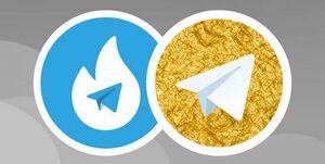 پایان تراژیک انحصار پوستههای داخلی تلگرام/ کسی پاسخ دخالت خارجی را خواهد داد؟
