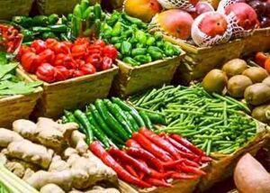 کدام محصولات «ارگانیک» هستند؟